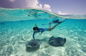 Excursions in Half Moon Cay - Stingray Cove Adventure