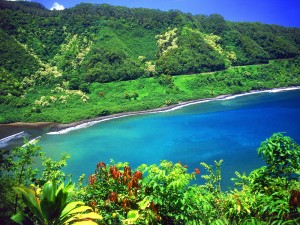 The road to Hana - Excursions in Maui